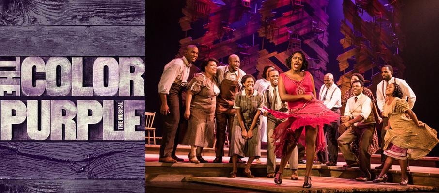 The Color Purple at The Playhouse on Rodney Square
